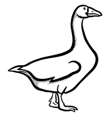 Husička