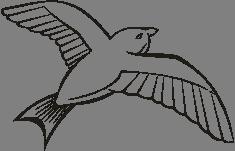 Letící ptáček