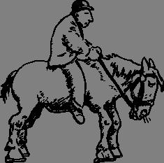 Muž na koni