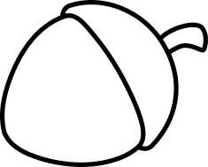 Žalud